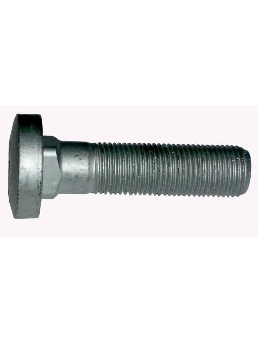 Rear Axle Bolt - 33432500