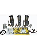 Engine Overhaul Kit - V311