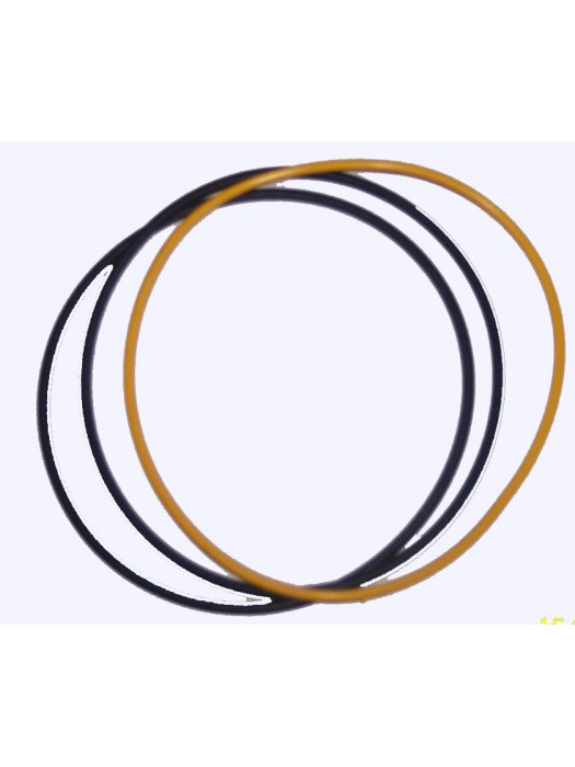 Cyl.Liner Seal - 836855446