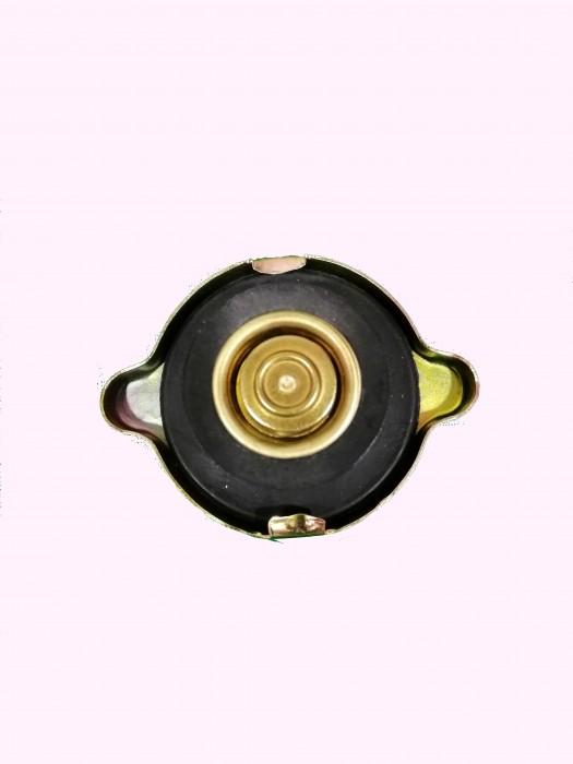 Radiator Cap - 30247600